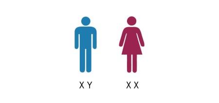 EPECS_XX-XY-01-1024x486